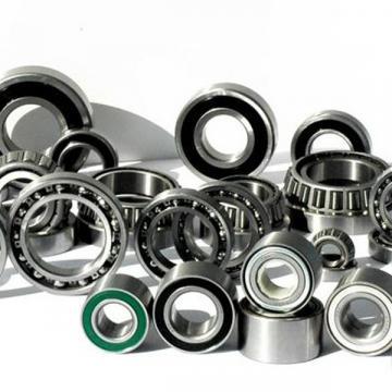 NU411 NU411E NU411M Cylindrical Roller Palau Bearings