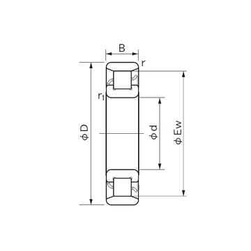 N 305 NACHI Cylindrical Roller Bearings