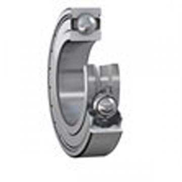 6007ZZE Deep Groove Ball Bearing 35x62x14mm