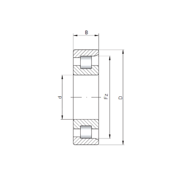 NF206 ISO Cylindrical Roller Bearings