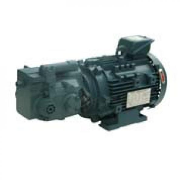 Best-selling  Japanese Daikin Pumps #5 image