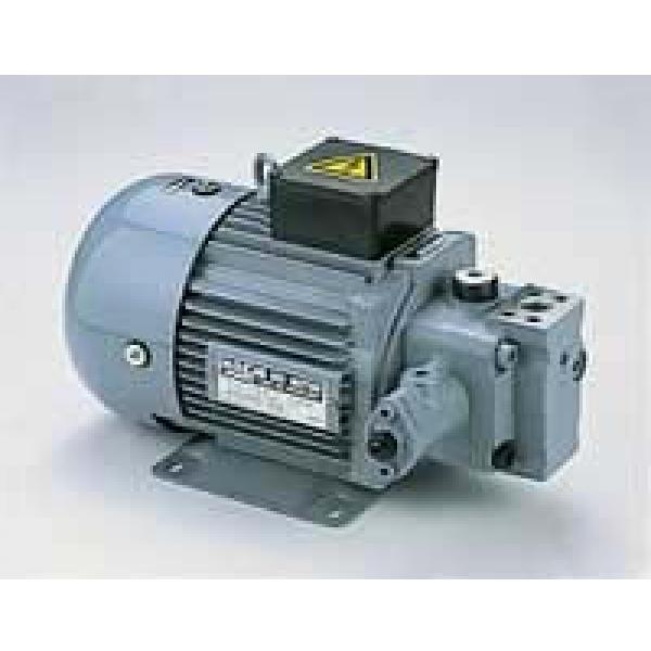 Best-selling  Nachi Original Pumps #5 image