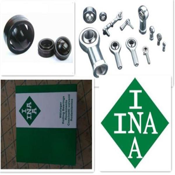 INA  SL04-5038NR TOP 10 Bearing #2 image