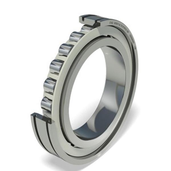 INA  SL04-5020NR 2018 latest Bearing #4 image